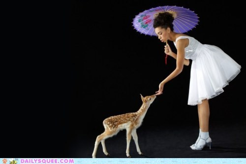 acting like animals,baby,curious,deer,fawn,feeding,model,posing