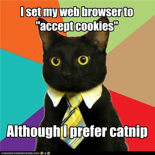 browsers business Business Cat catnip Cats cookies internet - 5851477504