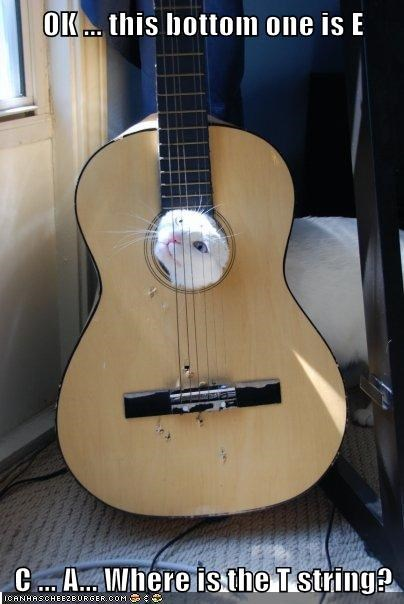 ä c confused e guitar letters names strings t - 5851603712