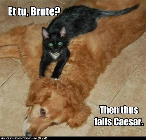 Et tu, Brute? Then thus falls Caesar.