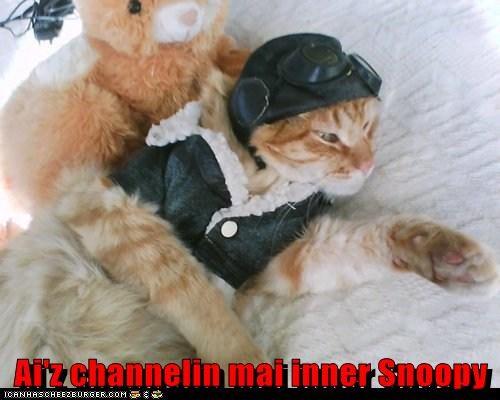 Cheezburger Image 5852191744