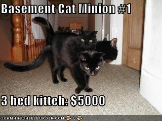 Basement Cat Minion #1  3 hed kitteh: $5000