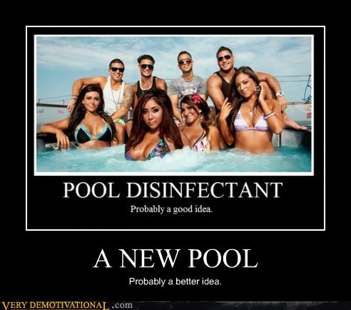 idiots,jersey shore,new,pool