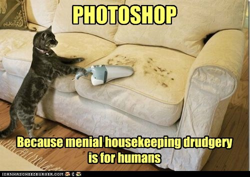 PHOTOSHOP Because menial housekeeping drudgery is for humans