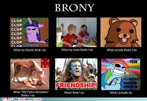 brony friendship meme what people do - 5853726208