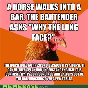 anti joke chicken,bar,horses,sarah jessica parker