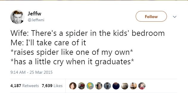spiders tweets funny tweets animal tweets - 5854981
