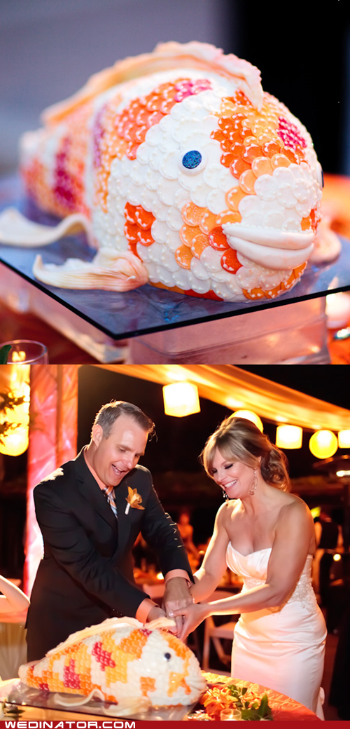 cake,fish,funny wedding photos,wedding cake