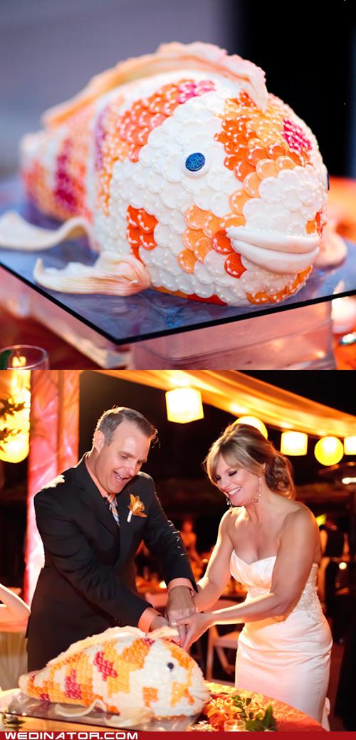 cake fish funny wedding photos wedding cake - 5854987776