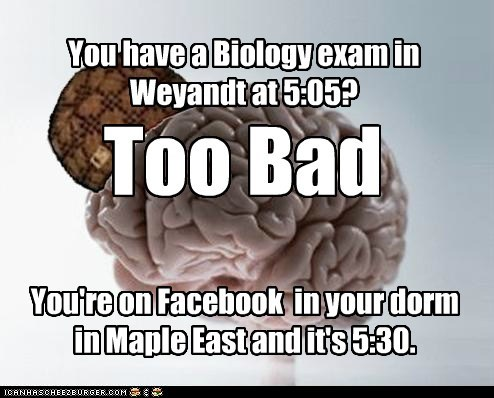 brain college dorm exam scumbag scumbag brain university