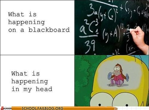 blackboard homer simpson infographic monkey reality vs expectations - 5855632896