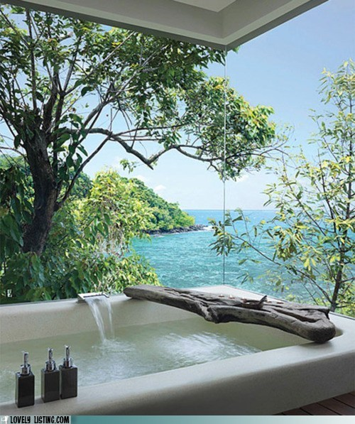 bathroom,best of the week,hillside,jungle,ocean,Tropical,tub,view