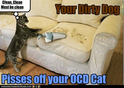 Your Dirty Dog Pisses off your OCD Cat Clean, Clean Must be clean