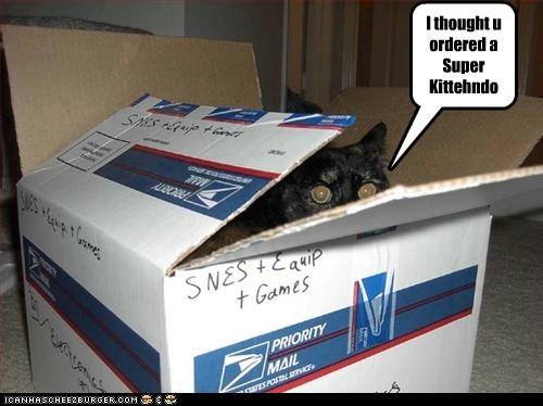 I thought u ordered a Super Kittehndo