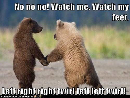 baby bears,bear cubs,bears,dance,dance lesson,dancing