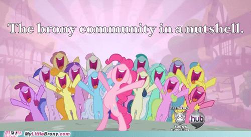 Bronies brony community Party pinkie pie smile - 5858683904