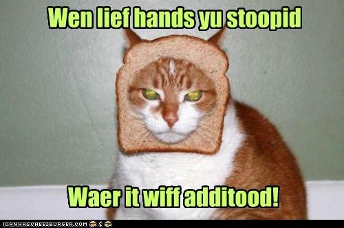 Wen lief hands yu stoopid Waer it wiff additood!