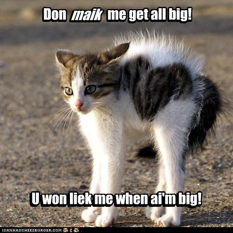 Don maik me get all big!