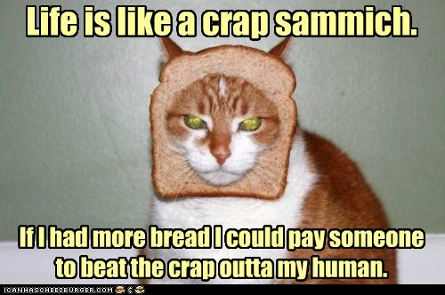 Life is like a crap sammich. If I had more bread I could pay someone to beat the crap outta my human.