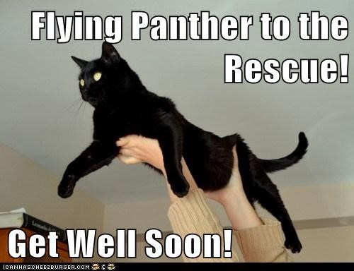 Flying Panther to the Rescue! Get Well Soon! - Cheezburger
