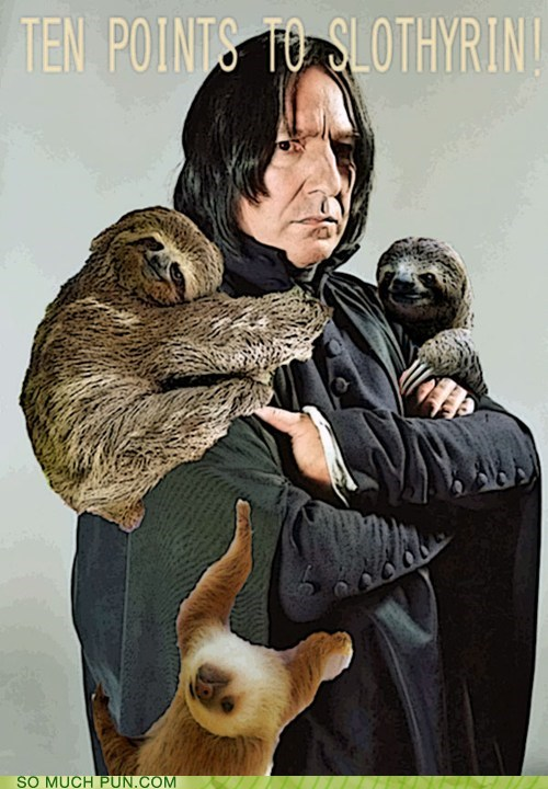 Hall of Fame Harry Potter house houses literalism prefix similar sounding sloth slytherin snape - 5861677568