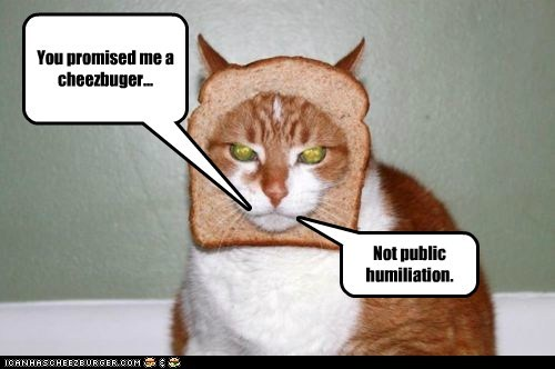 Cheezburger Image 5862497280
