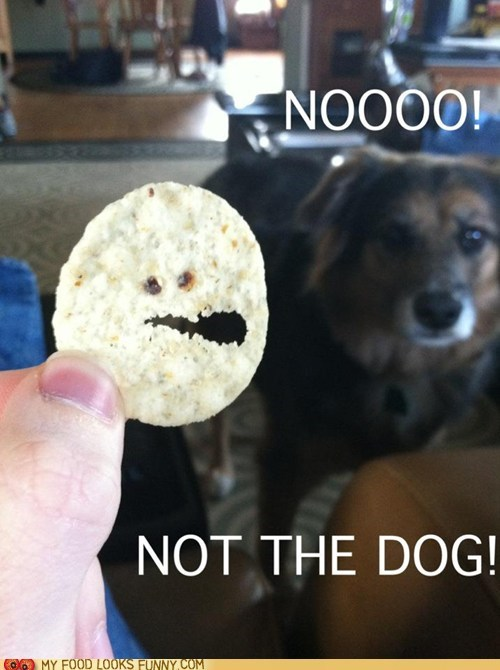 chip Death dogs face horror no