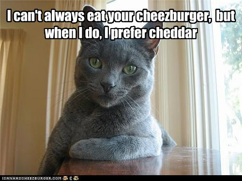 Cheezburger Image 5864092928