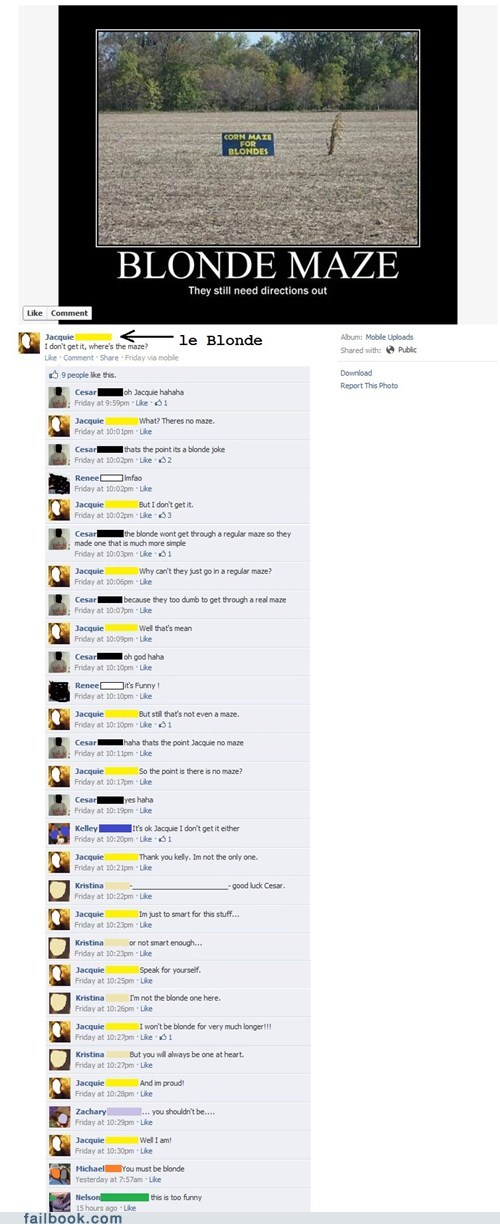 blonde jokes failbook Featured Fail g rated irony - 5864776448