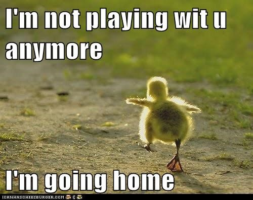 caption,childish,children,duck,duckling,ducklings,ducks,friends,home,how rude,not playing anymore,playing,run away,upset