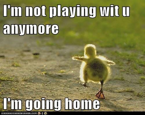 caption children duck duckling ducklings ducks friends home playing run away upset - 5865169664