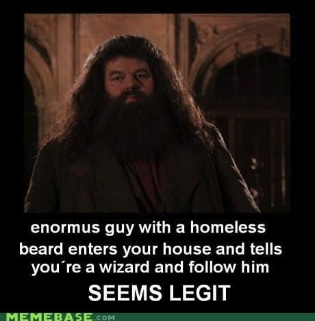 Hagrid seems legit wizard - 5866393344