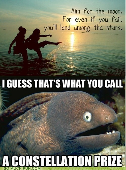 Bad Joke Eel on inspirational quotes