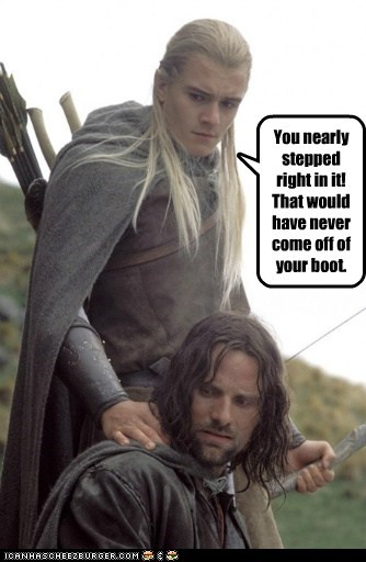 aragorn,boot,legolas,Lord of the Rings,orlando bloom,stepped,viggo mortensen