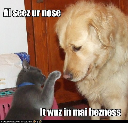 Ai seez ur nose It wuz in mai bezness