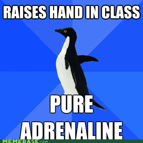 adrenaline,class,knowledge,rush,socially awkward penguin
