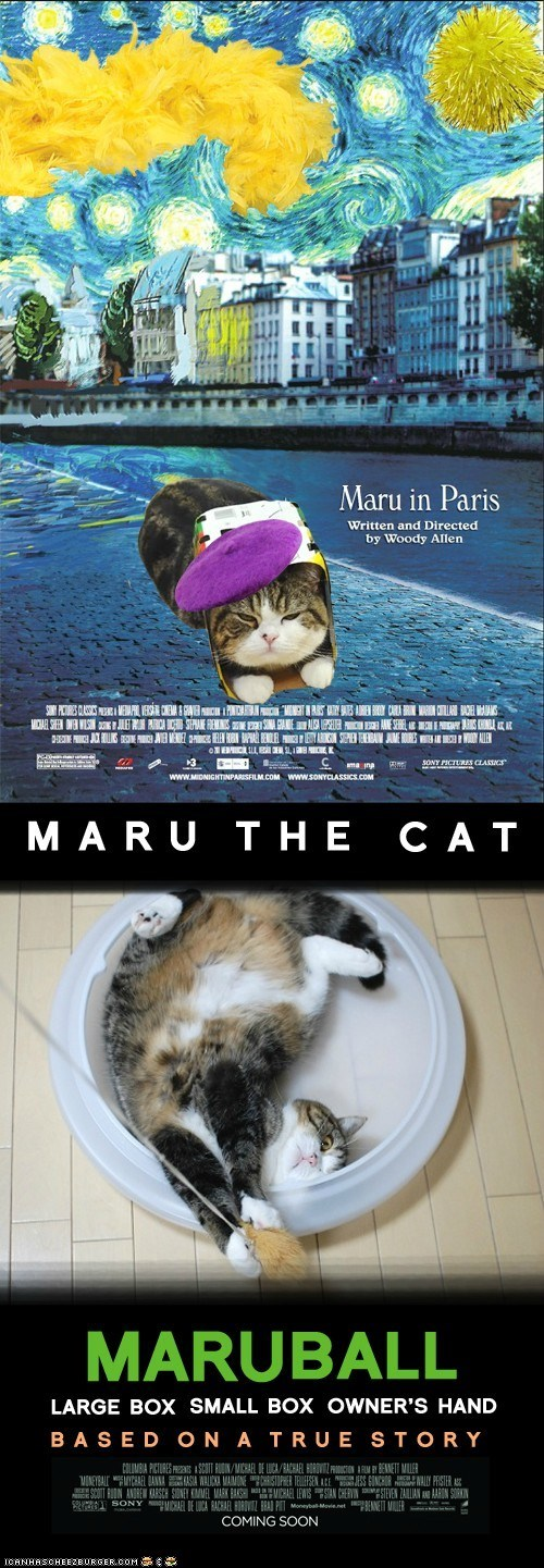 academy awards,best of the week,maru,Midnight in Paris,moneyball,movie posters,movies,oscars,photoshopped