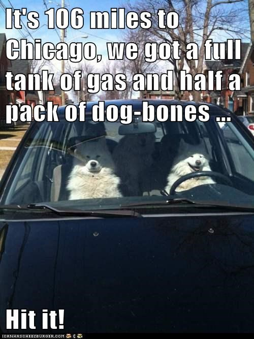 It's 106 miles to Chicago, we got a full tank of gas and half a pack of dog-bones ... Hit it!
