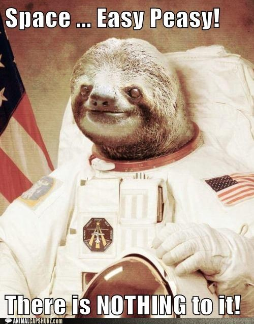 astronaut caption contest easy easy peasy nothing to it sloth space sloth - 5867973376