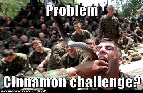 political pictures snakes soldiers - 5868190464
