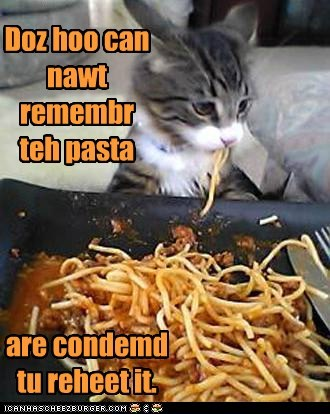 cant caption captioned cat condemned past pasta pun quote reheat remember repeat spaghetti those - 5868356608