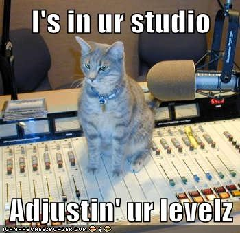 adjusting,caption,captioned,cat,im-in-your,levels,meme,Music,studio