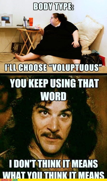 body type,inigo montoya,meme,online profile,the internets,voluptuous