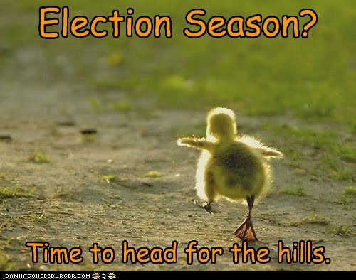 duck,duckling,election,head for the hills,political,politics,run