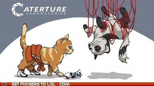 aperture science,Cats,chell,gladOS,Portal,portal gun,video games