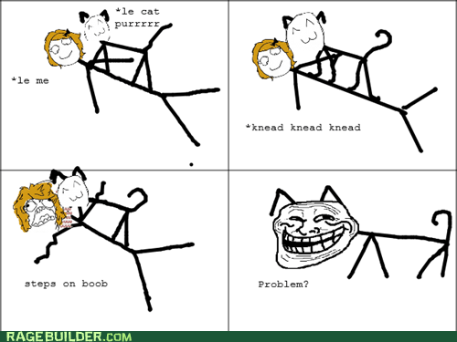 bewbees cat Rage Comics troll - 5869660928