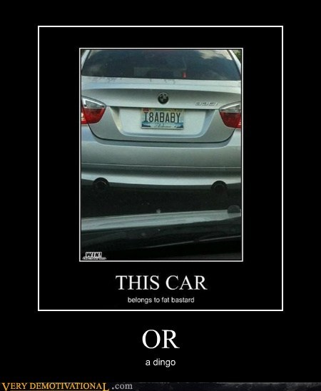 car hilarious license plate - 5871074304