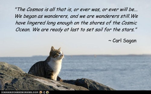 """The Cosmos is all that is, or ever was, or ever will be... We began as wanderers, and we are wanderers still.We have lingered long enough on the shores of the Cosmic Ocean. We are ready at last to set sail for the stars."" ~ Carl Sagan"