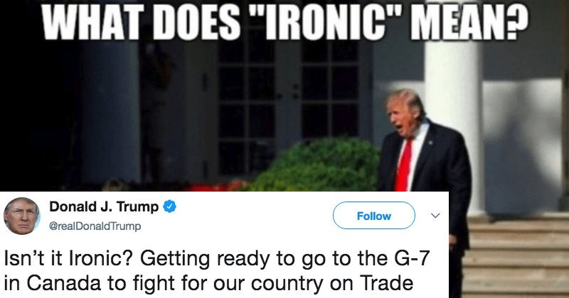 FAIL morons donald trump roast ridiculous funny stupid politics - 5871621