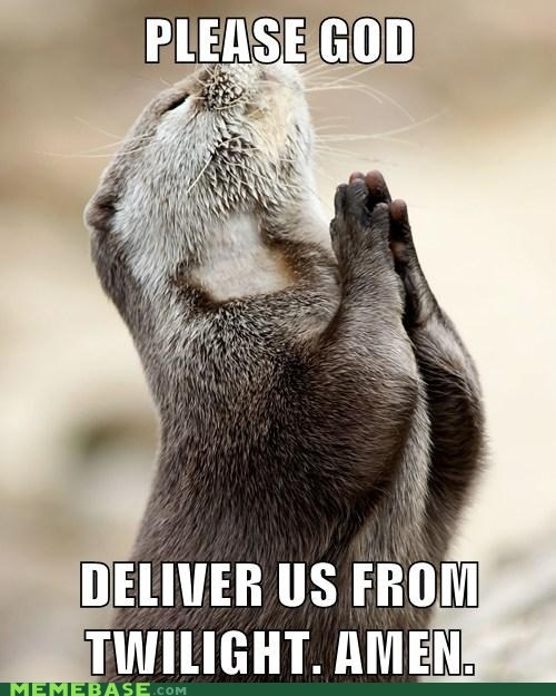 amen,Memes,otter,prayer,twilight